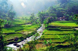 Kemenkominfo Latih UMKM dan Desa Wisata Maksimalkan Internet
