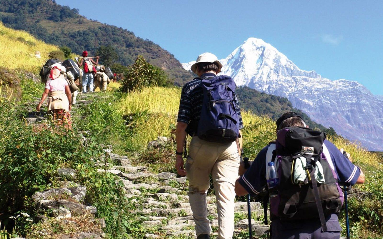 Mencoba Tour Trekking di Sentul Yang Mulai Diminati Saat Masa Pandemi