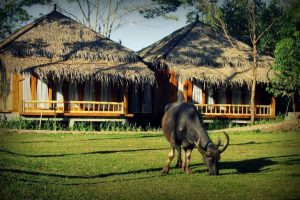 Mulih Ka Desa Hotel / Foto : traveloka.com