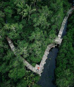 Mangrove Edupark Apar, Wisata Edukasi Konservasi Unggulan Sumbar