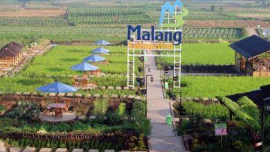 Desa Wisata Pujon Kidul Malang / Foto : desabisa.com
