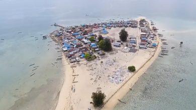 Pulau Mandike Muna Barat./foto: tangkapan layar youtube tawakal tando