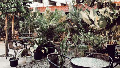 Taman belakang Stockholm Syndrome Bogor./foto: instagram stockholmsyndromebgr