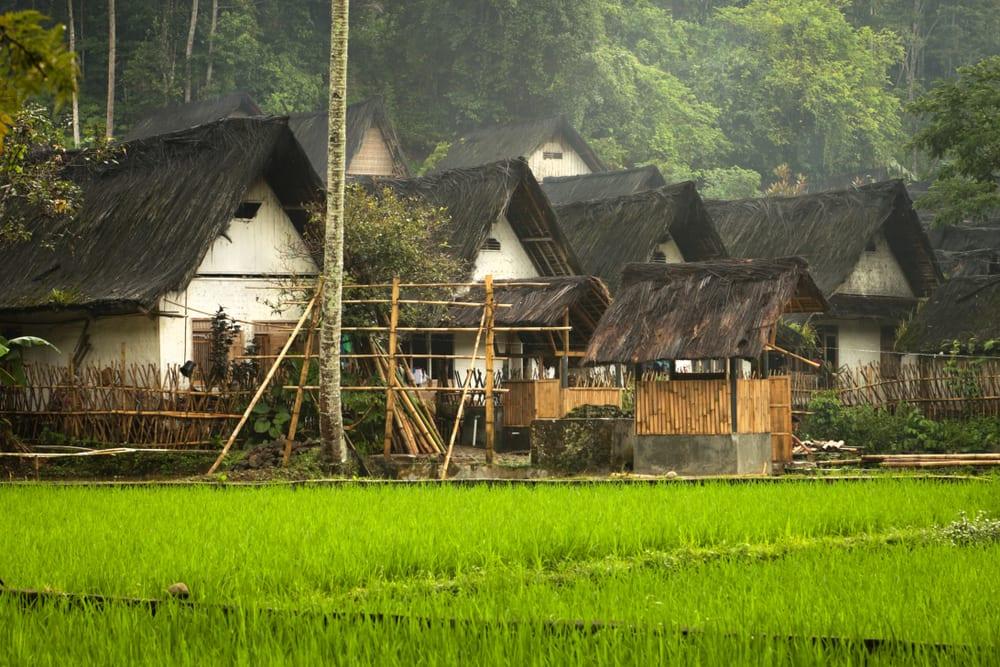 Kampung Adat Kuta Ciamis / Foto : travel.wego.com