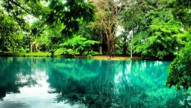 Danau Linting Deli Serdang / Foto : disbudpar.sumutprov.go.id