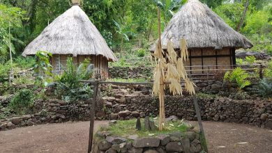 Rumah di Kampung adat Takpala di Alor, NTT./foto: instagram aga_oktadip
