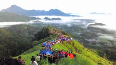 Bukit Jamur Bengkayang Kalbar / Foto : nelsonfernaldi.blogspot.com